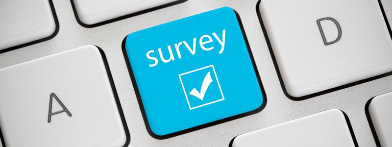 IT survey